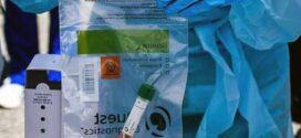 CORONAVIRUS | Cifra récord, Argentina confirmó 285 casos nuevos y en Chaco ya son 486 los infectados