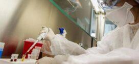 Coronavirus | Murieron 9 profesionales de la salud en Argentina y se infectaron 764