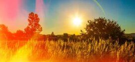 Domingo caluroso: : la máxima superará los 30 grados durante esta jornada