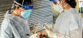 Chaco llegó a 120 muertes por Covid-19 y superó los 2.600 casos positivos