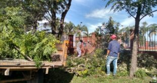 Municipalidad de Makallé: se continúa con la recolección de ramas y escombros
